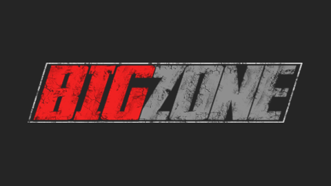 Big Zone Logo